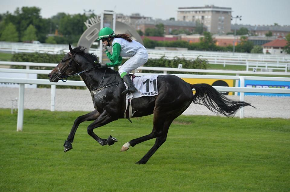 New Equusline Ambassador
