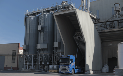Logística en GRUPO AGROVECO, base de crecimiento para los clientes y distribuidores