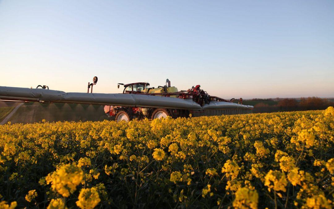 Nuevas inversiones en Grupo Agroveco